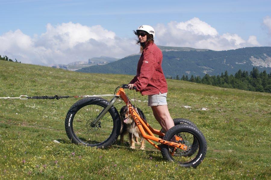 Chiens-de-traineau-Vercors-Cani-Kart-4