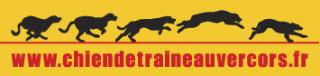 Logo Chien de Traineau Vercors